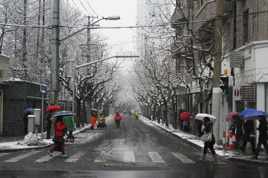 winter in Shanghai